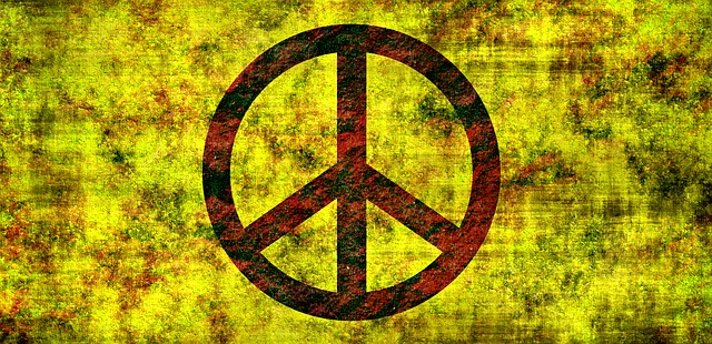 Hippies Counterculture and their Rebellion Against the Technopoly